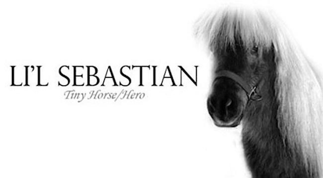 Li'l Sebastian R.I.P.