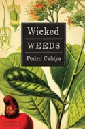 WickedWeeds