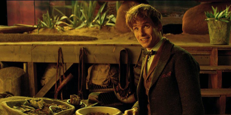 Fantastic Beasts and Where to Find Them, 2016