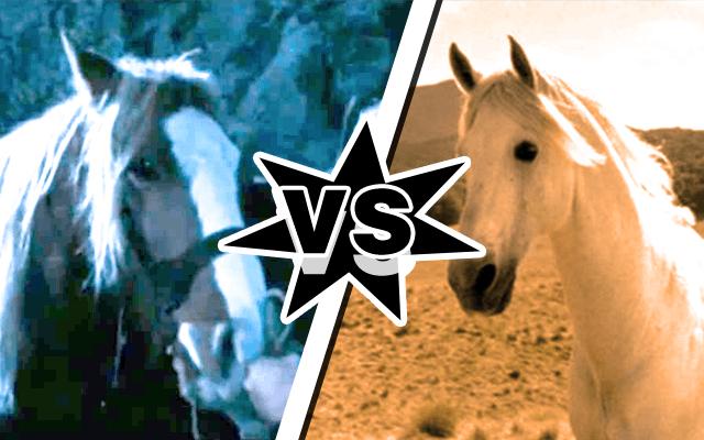 Bill the Pony vs Shadowfax