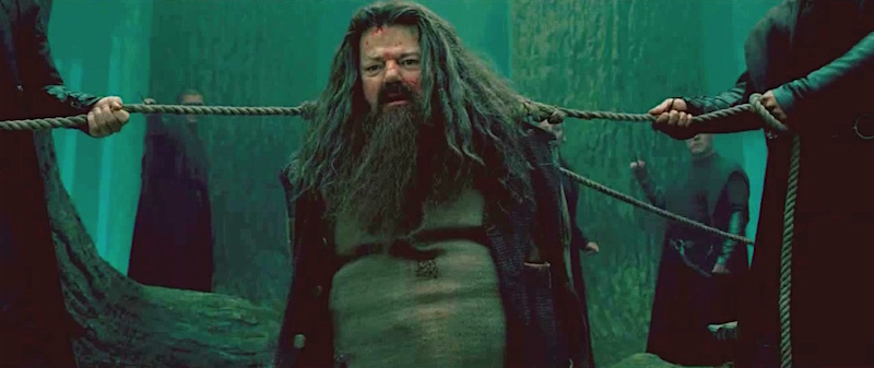 Hagrid tied up