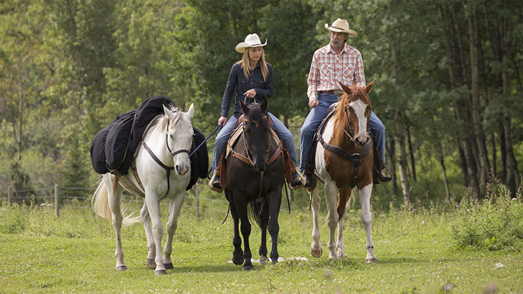 TV Dramas with the Right Amount of Horse Fantasy: Free Rein and