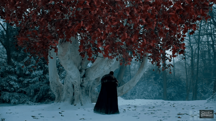 Game of Thrones weirwood tree