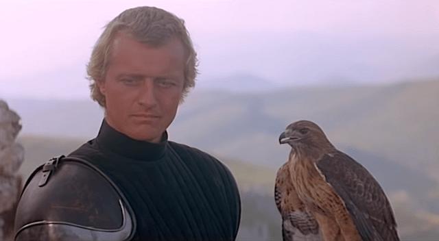 Fantasy Birds Are the Best Birds