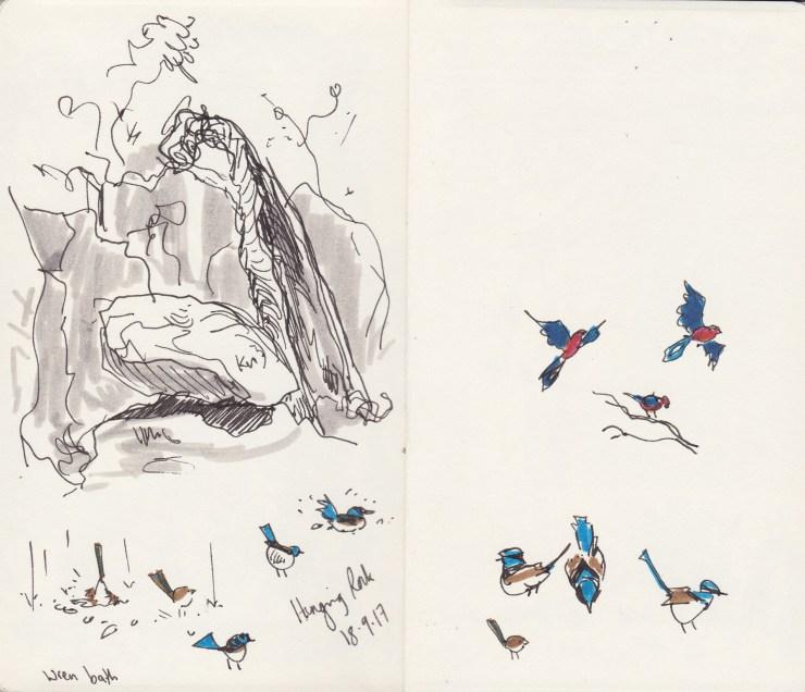 Picnic at Hanging Rock sketches by Kathleen Jennings