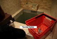 Photo de Tévilat Kélim : Lois sur l'immersion des ustensiles