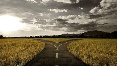 Photo de Quel est le vrai chemin?