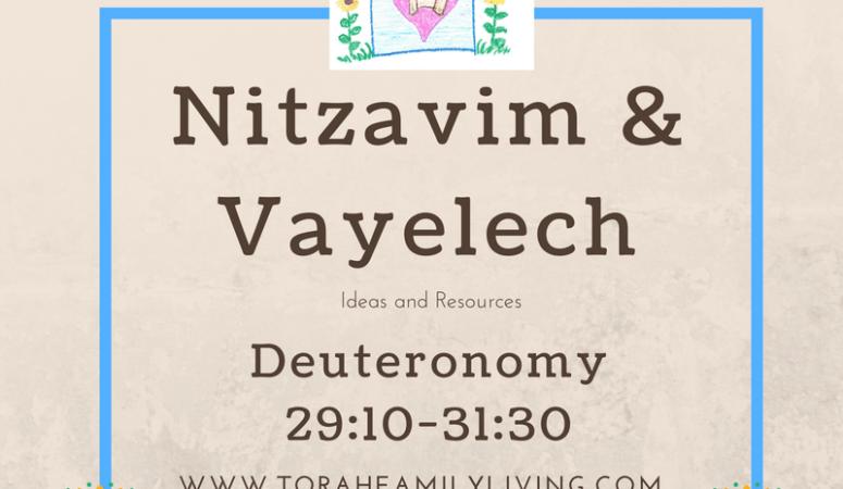 Nitzavim and Vayelech