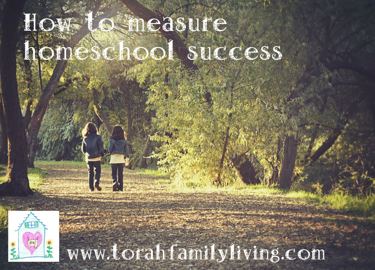 How do we measure homeschool success?
