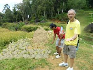 Toraja Trekking