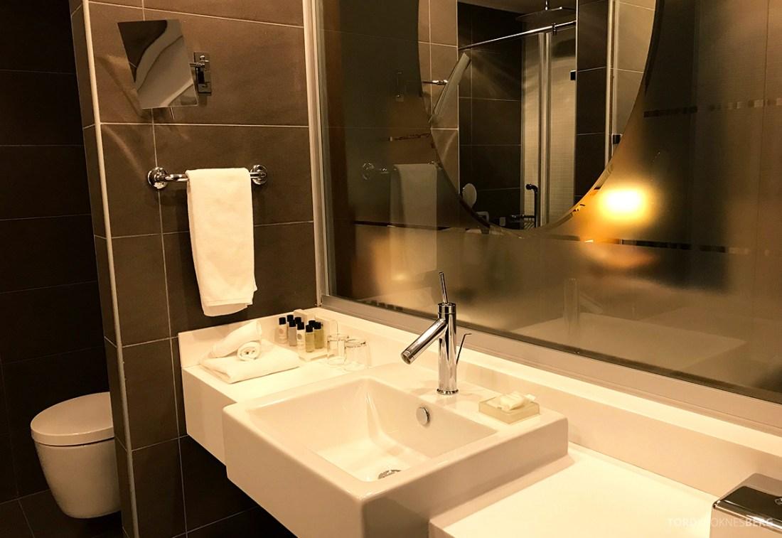 Radisson Blu Hotel Kyiv Podil bad servant