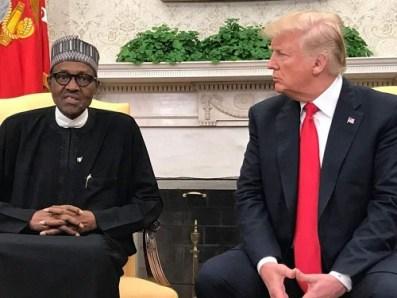 Donald Trump called Buhari lifeless