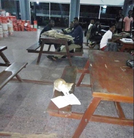 Cat Spotted Reading In Libary At OAU's Awo (Photos)