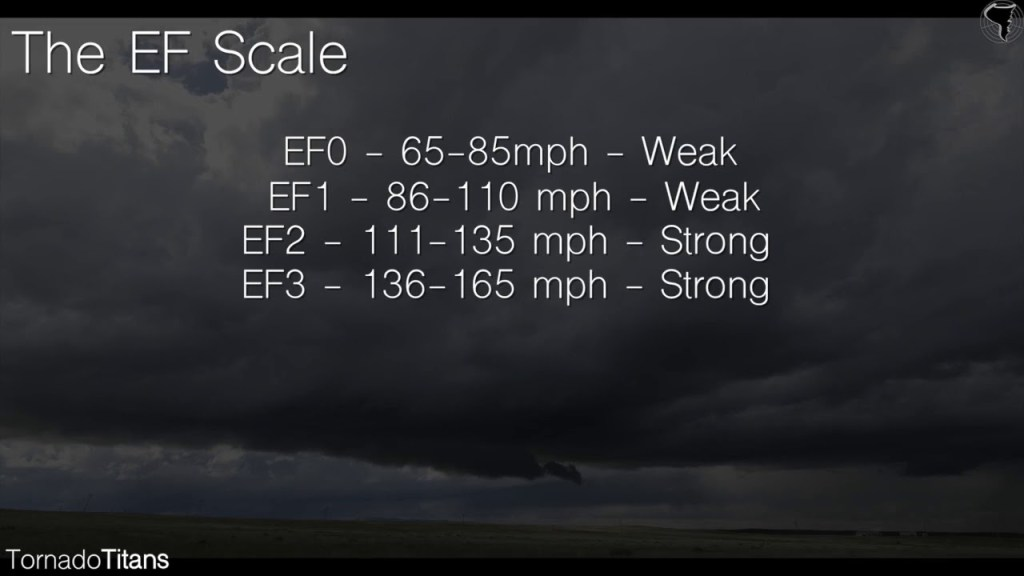 The EF Scale