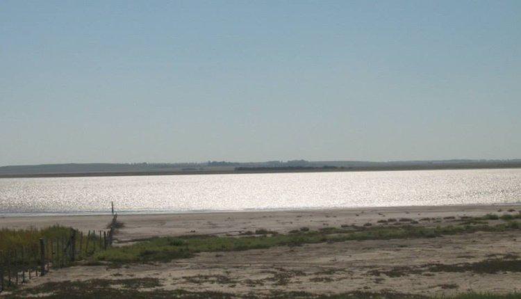 Hallaron restos de un esqueleto en una laguna de Saavedra