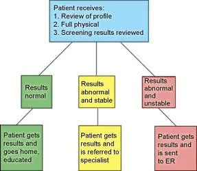 Patient Assesment Outcomes from the Clinic: The clinic chooses different outcomes depending on the severity of the situation (adapted from the Central Health Link Ontario model for the project).