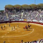 La feria de Vic-Fezensac se celebrará el 10 y 11 de julio sin la corrida de Pedraza de Yeltes