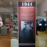 torquay-museum (10)