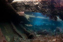 Victoria Towers shipwreck