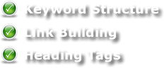 SEO Services - Torque Network