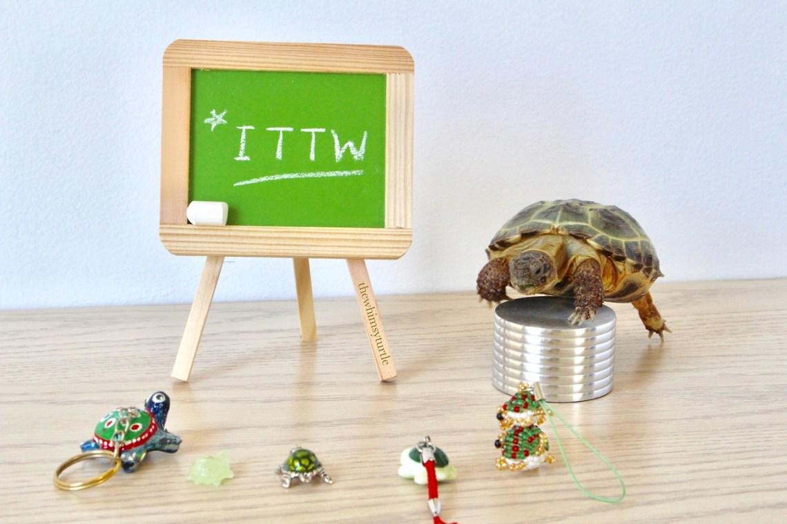 ITTW is here!