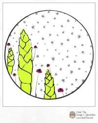 LTieu-Succulents2