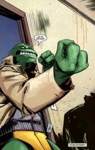 idw-tmnt-1-7-tortues-ninja-turtles