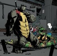idw-tmnt-16-7-slash-leonardo-tortues-ninja-turtles-tmnt