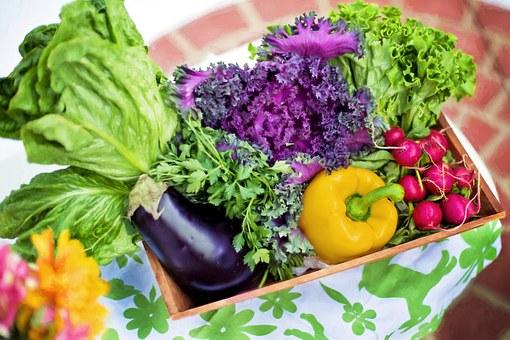 7 buoni motivi per mangiare le verdure ad inizio pasto