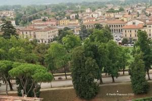 A Lucca si abbattono gli alberi
