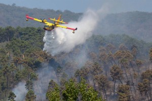 L'incendio del 15 agosto sui Monti Pisani