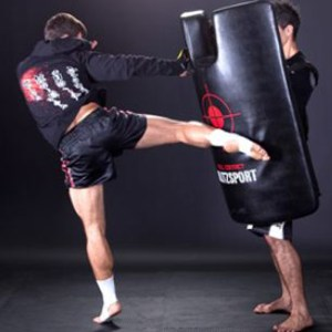 Strike Shields And Kick Pads