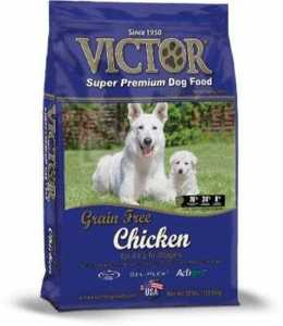 Victor Chicken Grain-Free Dry Dog Food