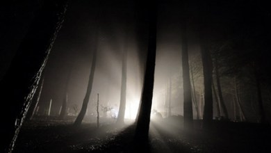 Photo of Lumina: De la întuneric la transformare