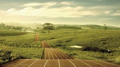 Photo of Pentru ce alergi?