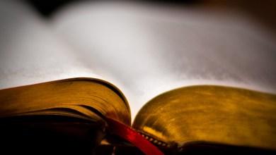 Photo of Jurnalul unei Biblii(partea II)