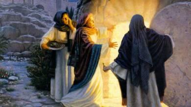 Photo of Isus e viu!