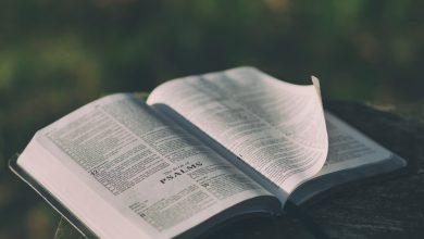 Photo of 10 lucruri fascinante despre Biblie