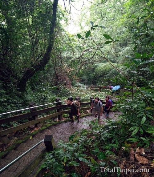 four beasts trail taipei
