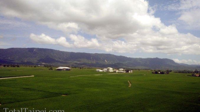 taiwan organic farmland