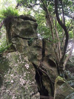 Limestone Hill