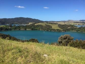 Waitangi Lookout