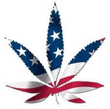 Cannabis in the USA