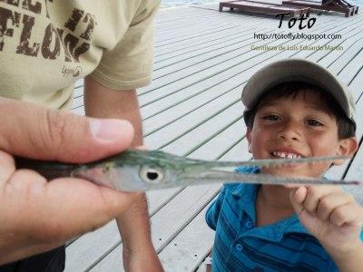 Pesca en San Andrés 5