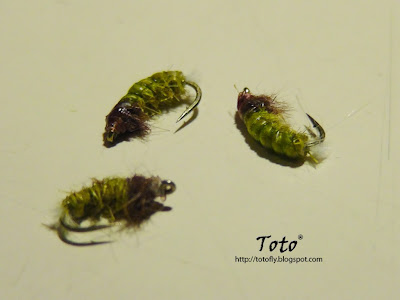 Caddis Larva by Toto®