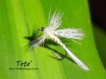 Lajita… pero como mosca seca… by Toto®