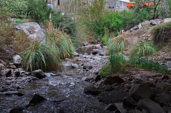 Piscicultura Río Blanco - El río Blanco 2