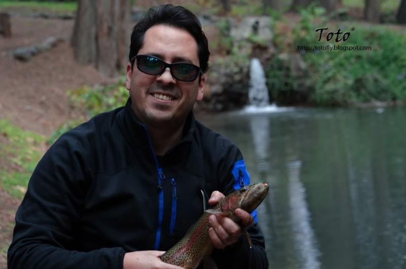 Piscicultura Río Blanco - Baby trout 5