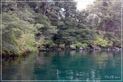 Apertura Lago Rupanco 2014-2015-18