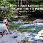 Pesca a Ninfa Europea en aguas de la Araucanía y el Perdigón